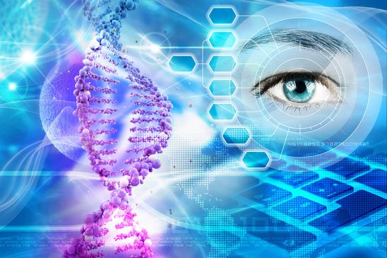 wada genetyczna wazektomia