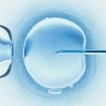 Zapłodnienie in vitro – 4 najważniejsze informacje