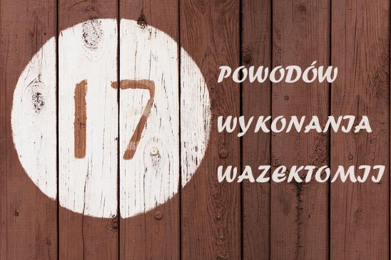 17-powodow