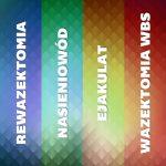 Wazo-wazostomia, wazektomia, rewazektomia – słownik pojęć
