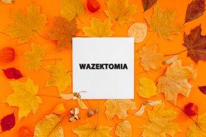 Wazektomia po wakacjach: wrzesień, październik 2021